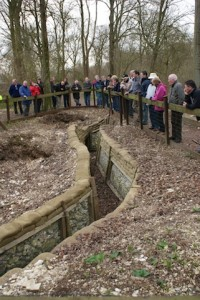 Excavated trenches Thiepval Wood