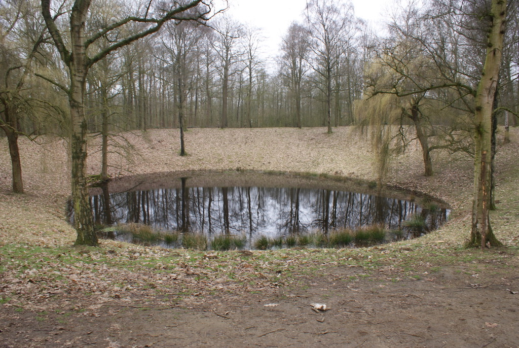 The Caterpillar Crater and Battle Wood